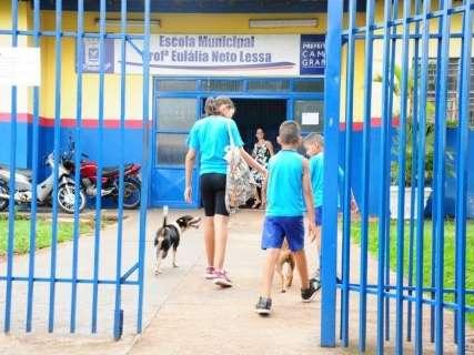 Lei Maria da Penha será ensinada nas escolas municipais de Campo Grande