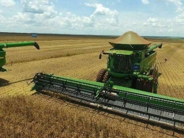 A produtividade é apontada como responsável pelo aumento da produção de grãos, já que, em termos de expansão de área, a projeção é de que o crescimento seja de 14,5%. (Foto: Arquivo)