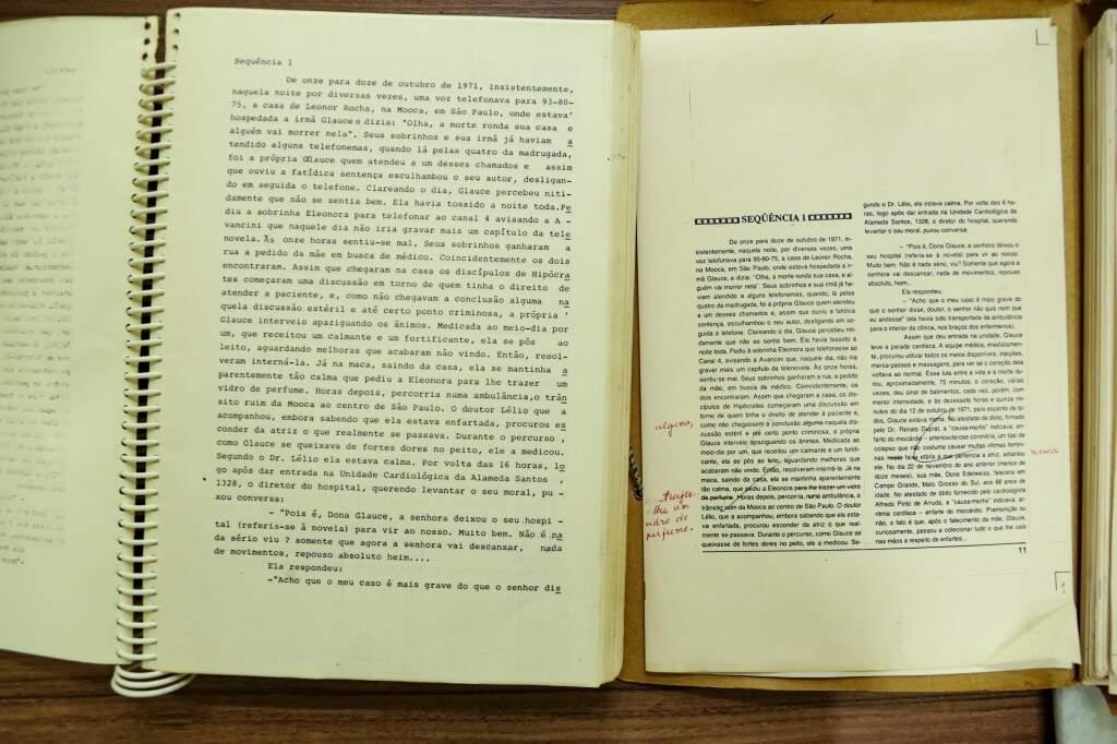 Projeto da biografia de Glauce Rocha escrita e revisada por José Octávio Guizzo (Foto: Kísie Ainoã)