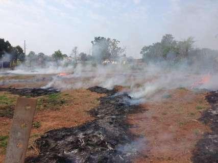 Fogo em vegetação incomoda moradores do Jardim Montevidéu