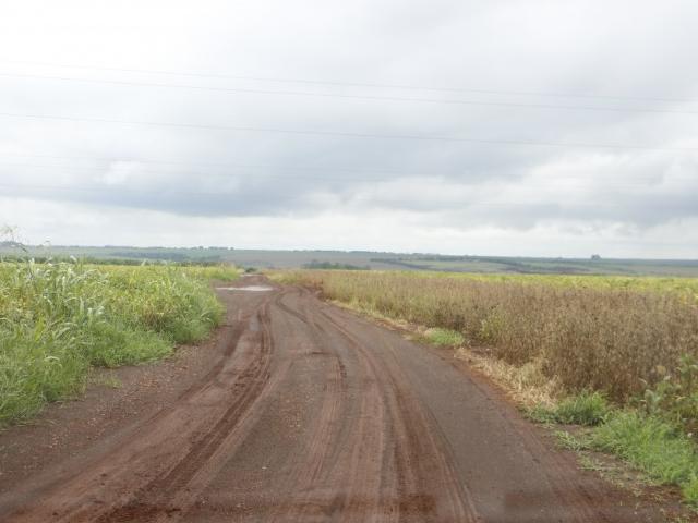 Estradas encharcadas dificultam acesso a lavouras de soja (Foto: Helio de Freitas)