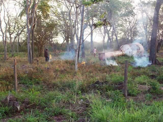 Área incendiada foi encontrada já com meio hectare de mata nativa queimada (Foto: Divulgação)