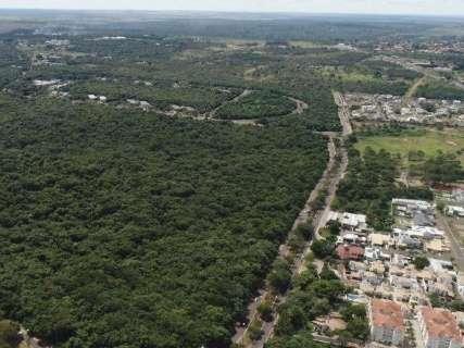 Processo sobre desmate no Parque dos Poderes é suspenso pelo TJMS
