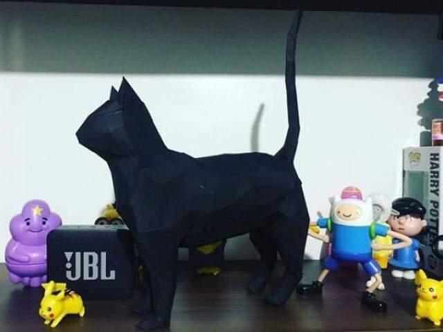 Gatos pretos. (Foto: Arquivo Pessoal)
