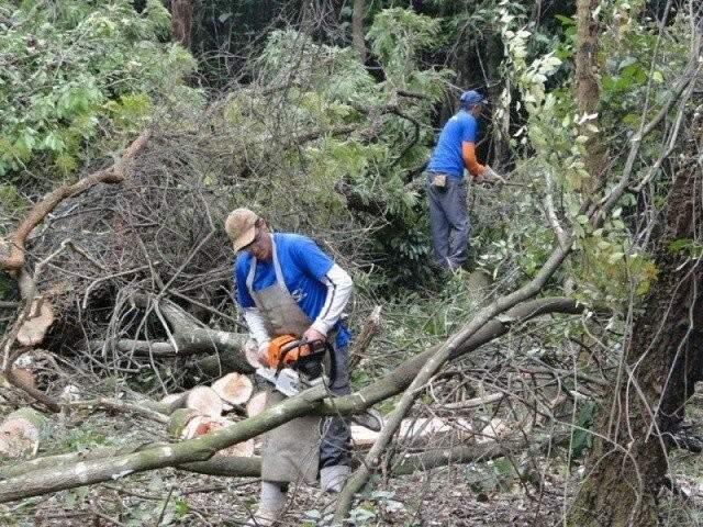 Projetos tratam da preservação no Parque dos Poderes (Foto: Reprodução - Facebook)