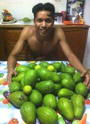 Abacate também entrou na dieta. (Foto: Arquivo Pessoal)