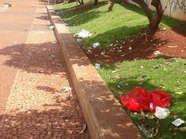 Copos plásticos, restos de fantasias e papeis deixados em canteiro da Orla (Foto: Direto das Ruas)