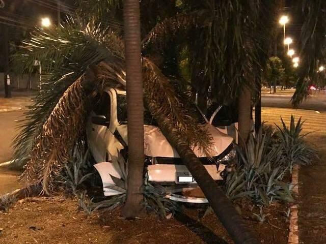 Flagrante logo depois da colisão mostra carro parcialmente destruído entre coqueiros. (Foto: Lucimar Couto.