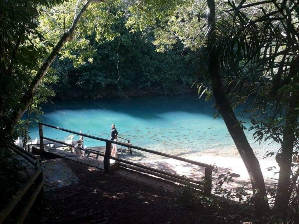 A beleza das águas cristalinas no Rio da Prata. (Foto: Instituto Amigos do Rio da Prata)