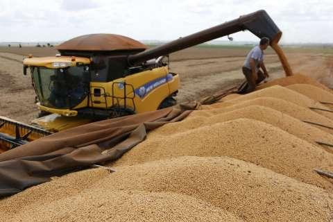 MS é o único estado do Brasil com saldo positivo de empregos