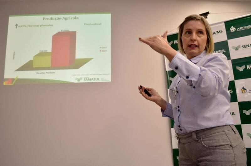 Embora se tenha a expectativa de redução de preço de algumas culturas, o aumento de área, principalmente no caso da soja, pode ser compensatório (Foto: Divulgação/Famasul)