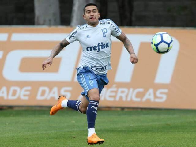 Atacante Dudu no último treino antes de enfrentar o Bahia fora de casa (Cesar Greco/Ag Palmeiras/Divulgação)