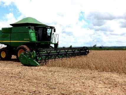 Colheita da soja chega a 24% da área plantada e plantio do milho avança