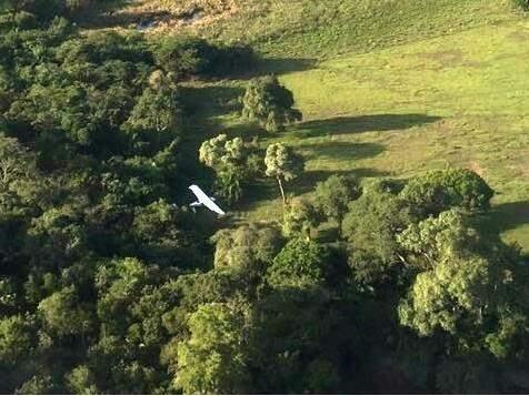 Avião foi encontrado pela Polícia na mahã desta terça-feira (19) (Foto: Site Porã News)