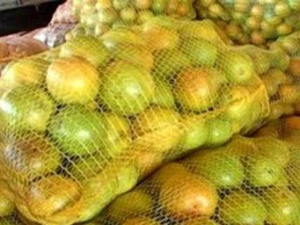 Indústrias de suco de laranja projetam investimentos em Mato Grosso do Sul