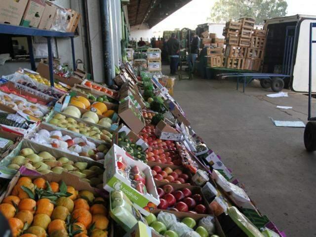 Preço das frutas ainda não mudou porque vendedores tinham estoque, mas alguns itens desse tipo devem subir a partir de amanhã (Foto: Saul Schramm)