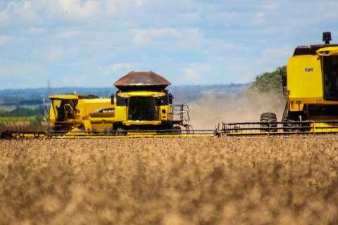 IBGE prevê alta de 2,6% em lavoura de soja, apesar de prejuízos com chuvas