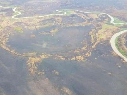 Com chuvas e fim de queimadas, força-tarefa no Pantanal é desmobilizada