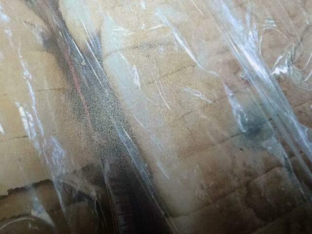 Foram descartados 21 pacotes de pães de forma entre tradicional, especial e integral com 400 gramas cada. (Foto: Divulgação/Procon)