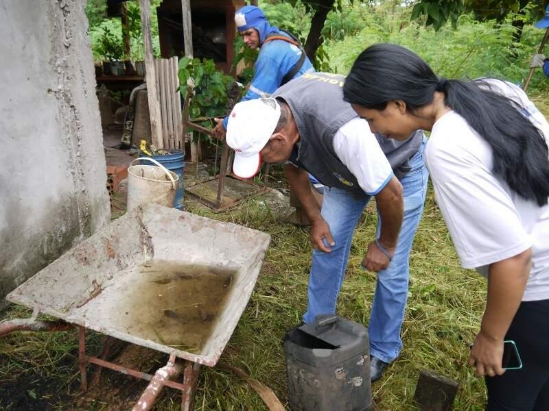 Mesmo com mutirões para conter proliferação do transmissor, casos de dengue aumentam todos os dias em Dourados (Foto: Arquivo)
