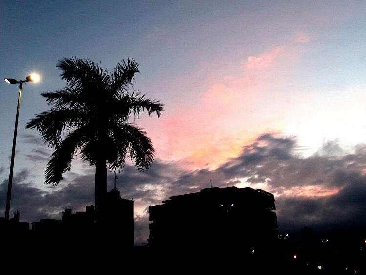 Palmeiras em penumbra no escurecer de Campo Grande. Haverá declínio na temperatura até sexta-feira (10), pela manhã. (Foto: Saul Schramm)