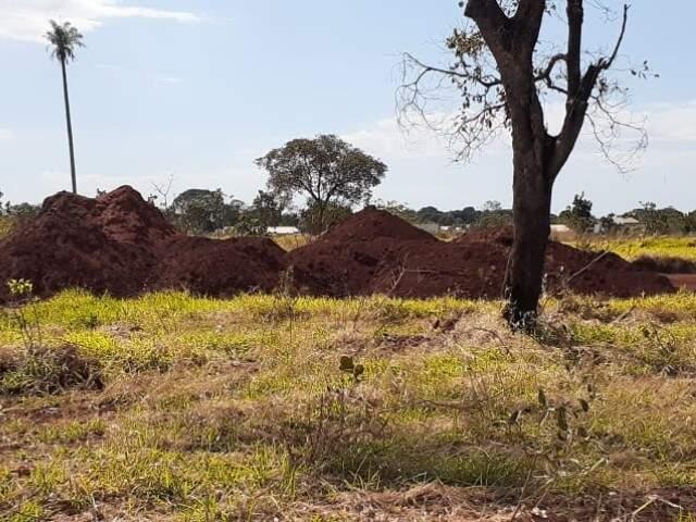 Uma das áreas apontadas pelos moradores como depósito de areia (Foto: Ronie Cruz)