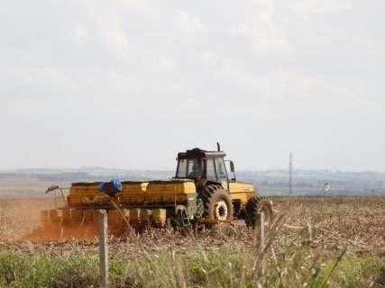 Plantio da soja entra na reta final com 72% da semeadura concluída em MS