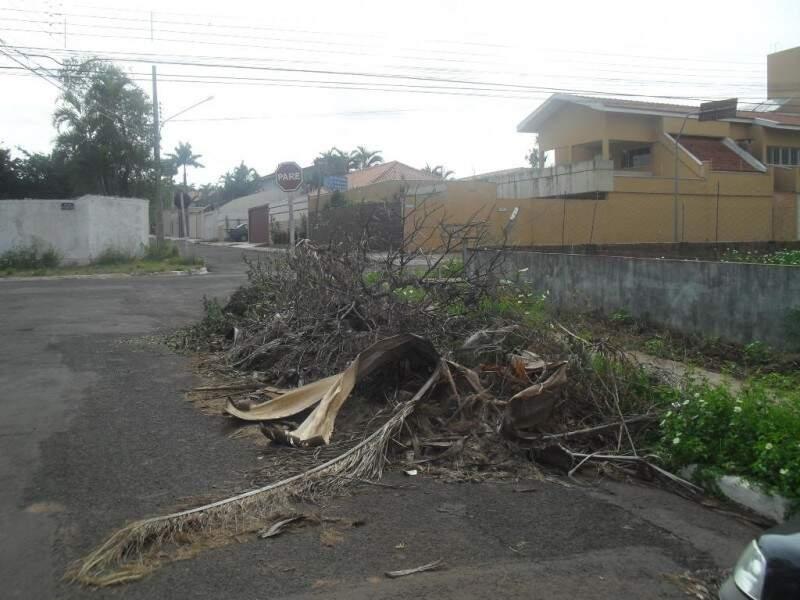 No Jardim Paulista, entulho e árvores estão no meio da rua. (Foto: Nelson Teixeira)
