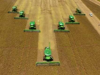 Safra da soja supera expectativas e pode chegar a 8 milhões de toneladas