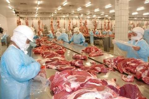 Valor bruto da agropecuária deve ter alta de 4% e ficar em R$ 26 bilhões