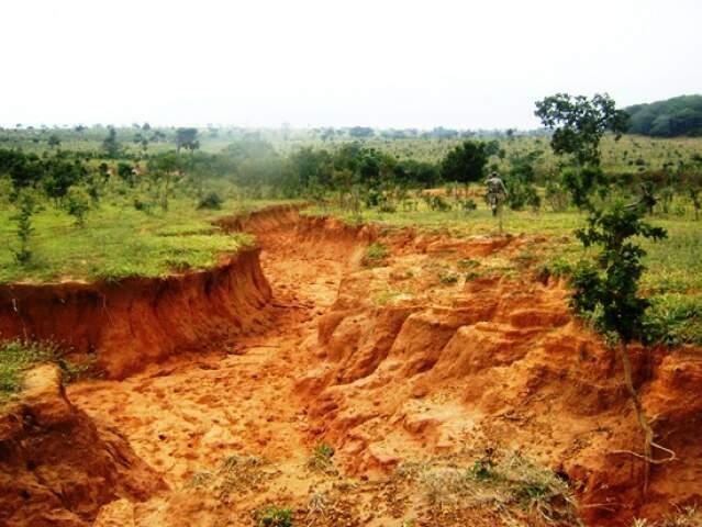 Erosão atinge 1,5 hectares de propriedade. (Foto: Divulgação)