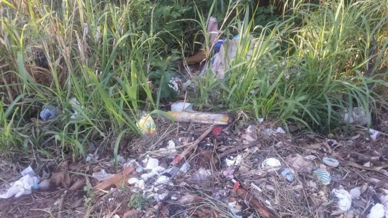 O lixo toma conta dos canteiros da Avenida José Barbosa Rodrigues. (Foto: Direto das Ruas)