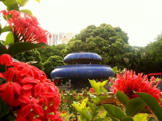 Jardim na Praça Ary Coelho, no centro da Capital; dia mais friozinho chega em meio à estação das flores (Foto: Marcos Ermínio)