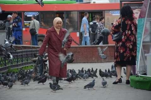 "Cheia de pombos, Kazan usa falcões para evitar ""batismo"" da torcida"