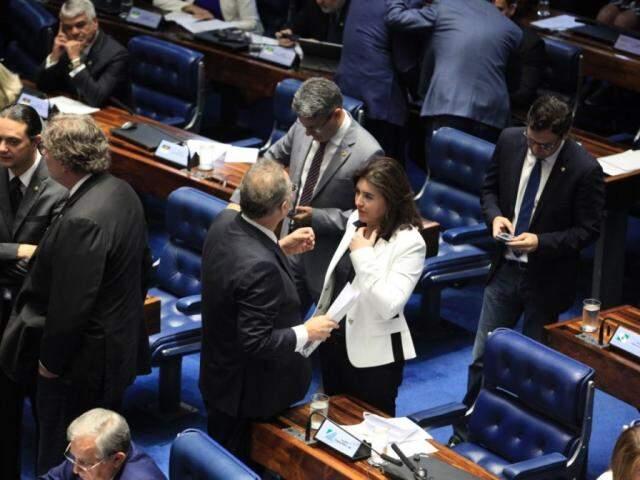 Renan Calheiros e Simone Tebet durante votação no senado nesta tarde (Foto: Roberto Castelo/ Assessoria)