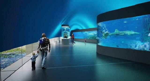 Visitante poderá transitar por túnel dentro do tanque. (Foto: Reprodução)