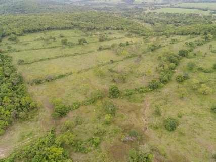 Fazendeiros são multados em mais de R$ 3 milhões por desmatamento em MS