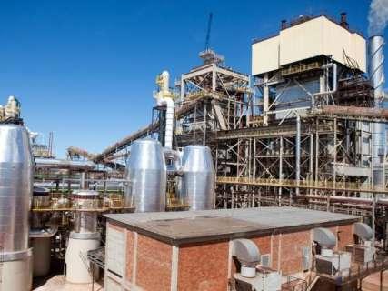 Com assembleia suspensa, usina de Bumlai tem novo pedido de falência