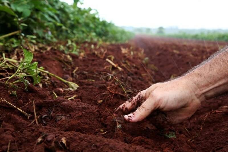 Agricultura consome mais de 70% da água mundial e em tempos de escassez precisa ser repensada (Fotos: João Garrigó)