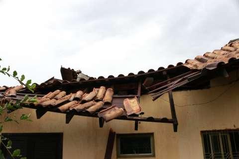 Parte de casa desaba e galho de árvore interdita rua durante chuva