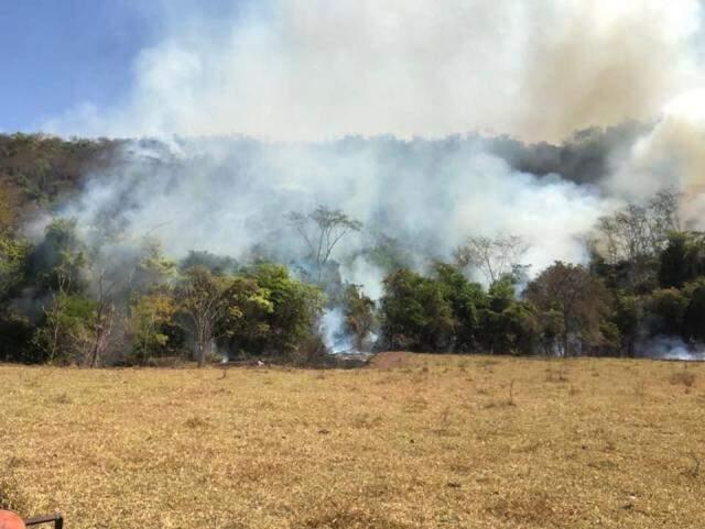 Fogo já destruiu milhares de hectares causando prejuízos incalculáveis a produtores rurais da região das montanhas. (Foto: Divulgação)