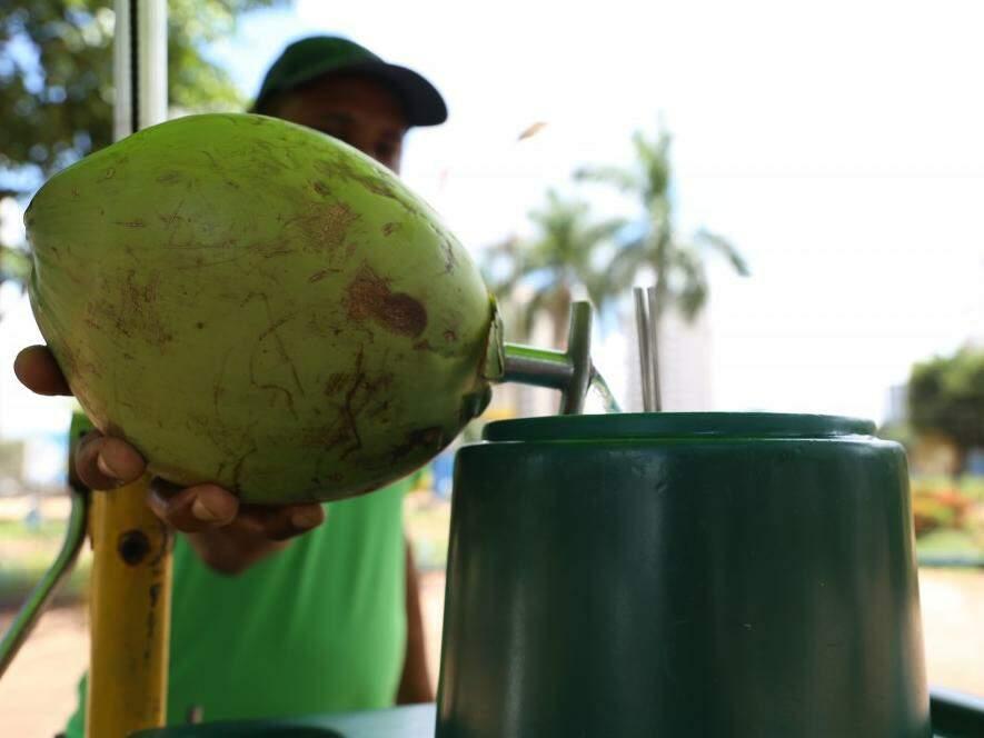 Noverão com temperaturas altas e sol escaldante, água de coco ajuda o corpo a se proteger  (Foto: Kisie Ainoã)