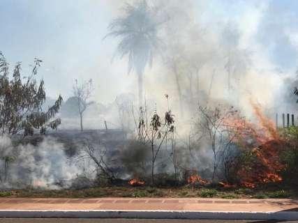 Ocorrências de incêndio aumentam 340% em Mato Grosso do Sul