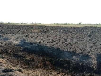 Calor e vento propagam incêndio que já destruiu 30 mil hectares de parque