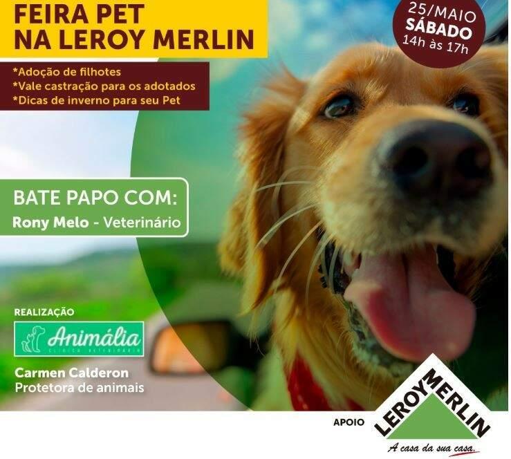 Leroy Merlin promove feira de doação de cães e gatos