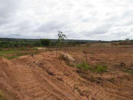 Com licença ambiental, área de mata é posta abaixo perto de rio