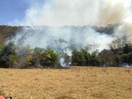 Outubro chuvoso tem menor número de queimadas em 10 anos