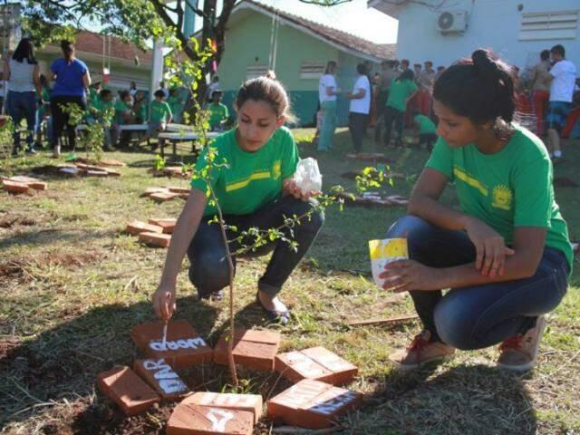 Alunos deixaram palavras, como paz e esperança, em tijolos ao lado das árvores plantadas no bosque (Foto: Divulgação)