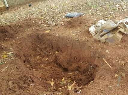 Após descoberta de corpo, só cães dão vida a sítio onde houve 2° enterro