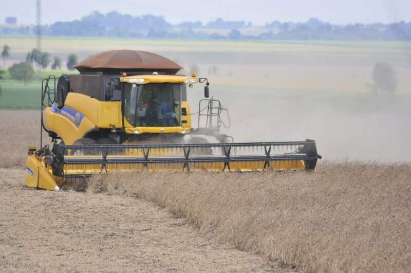 Colheita da soja em Mato Grosso do Sul, ano passado (Foto: Eliel Oliveira / Arquivo)